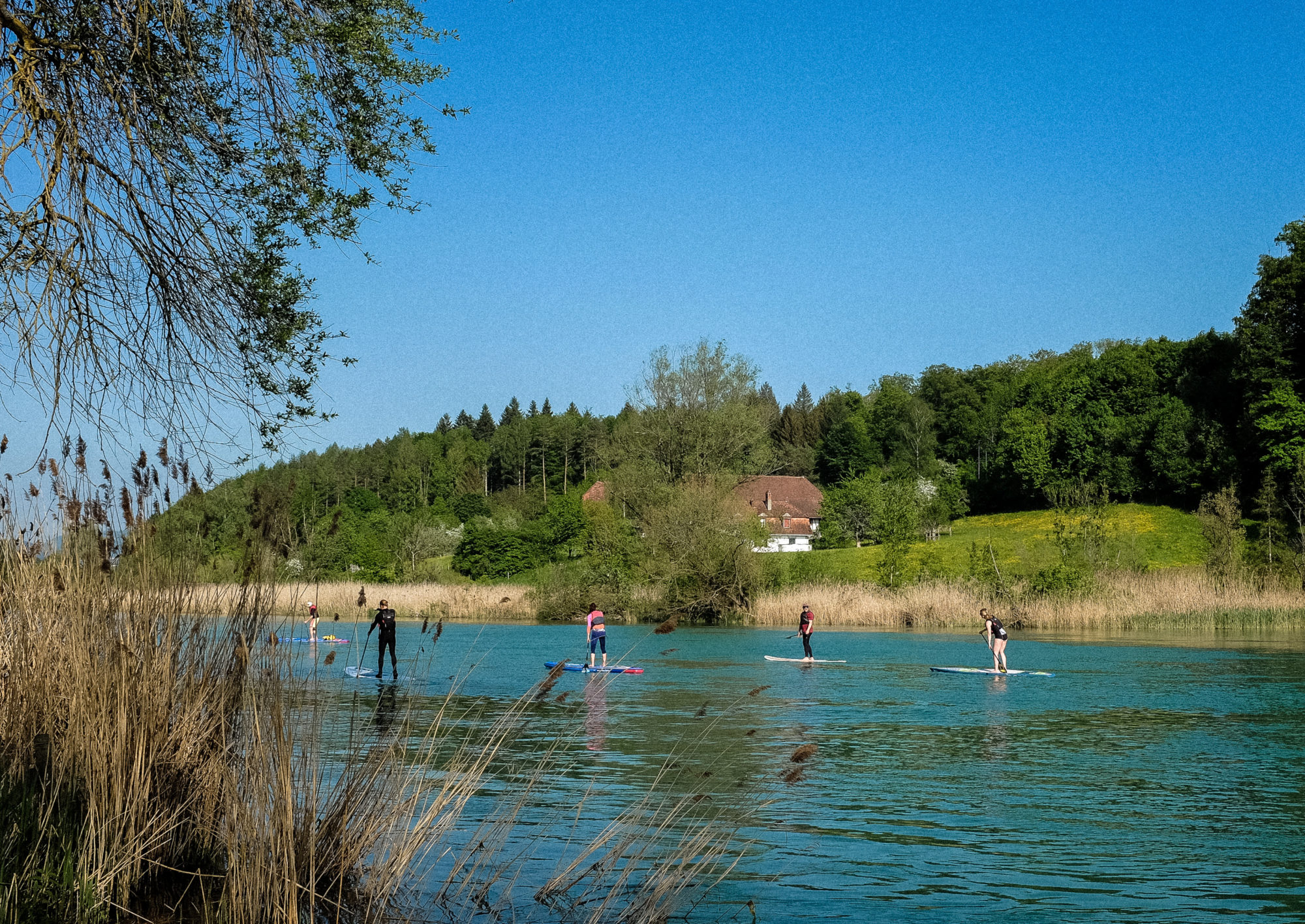 Aare-SUP